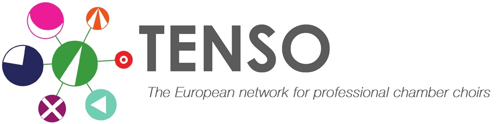 Tenso is seeking to appoint a (part-time) Co-ordinator